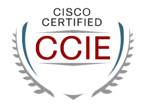 :: It's here! The CCIE LAB Image
